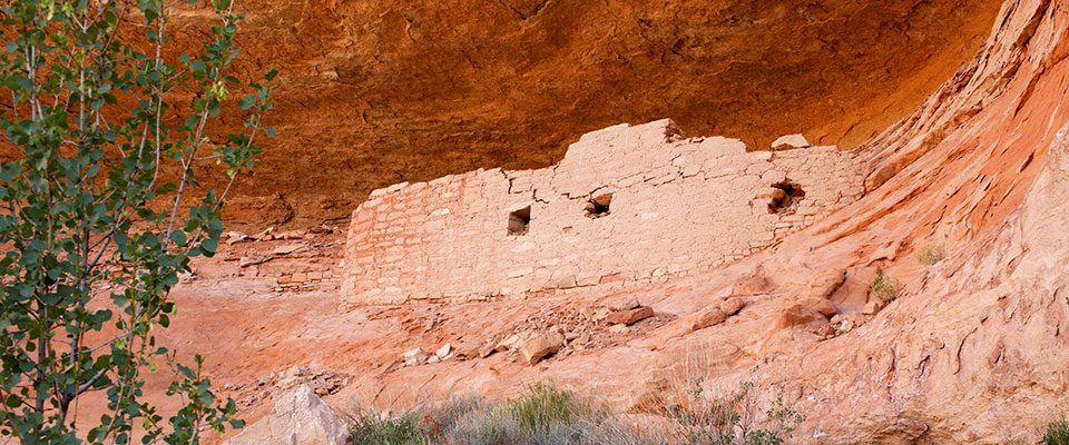 Canyons of the ancients national monument national