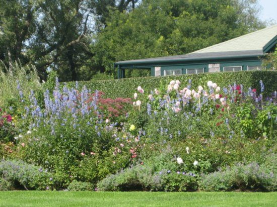 Exceptionnel Nantucket Gardens   Google Search