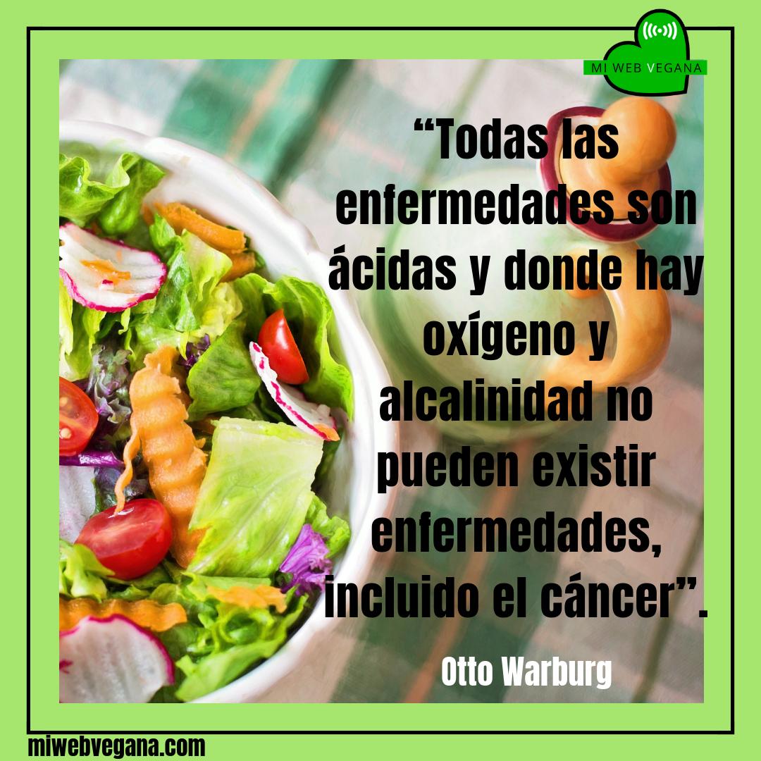 Pin En Vida Vegana