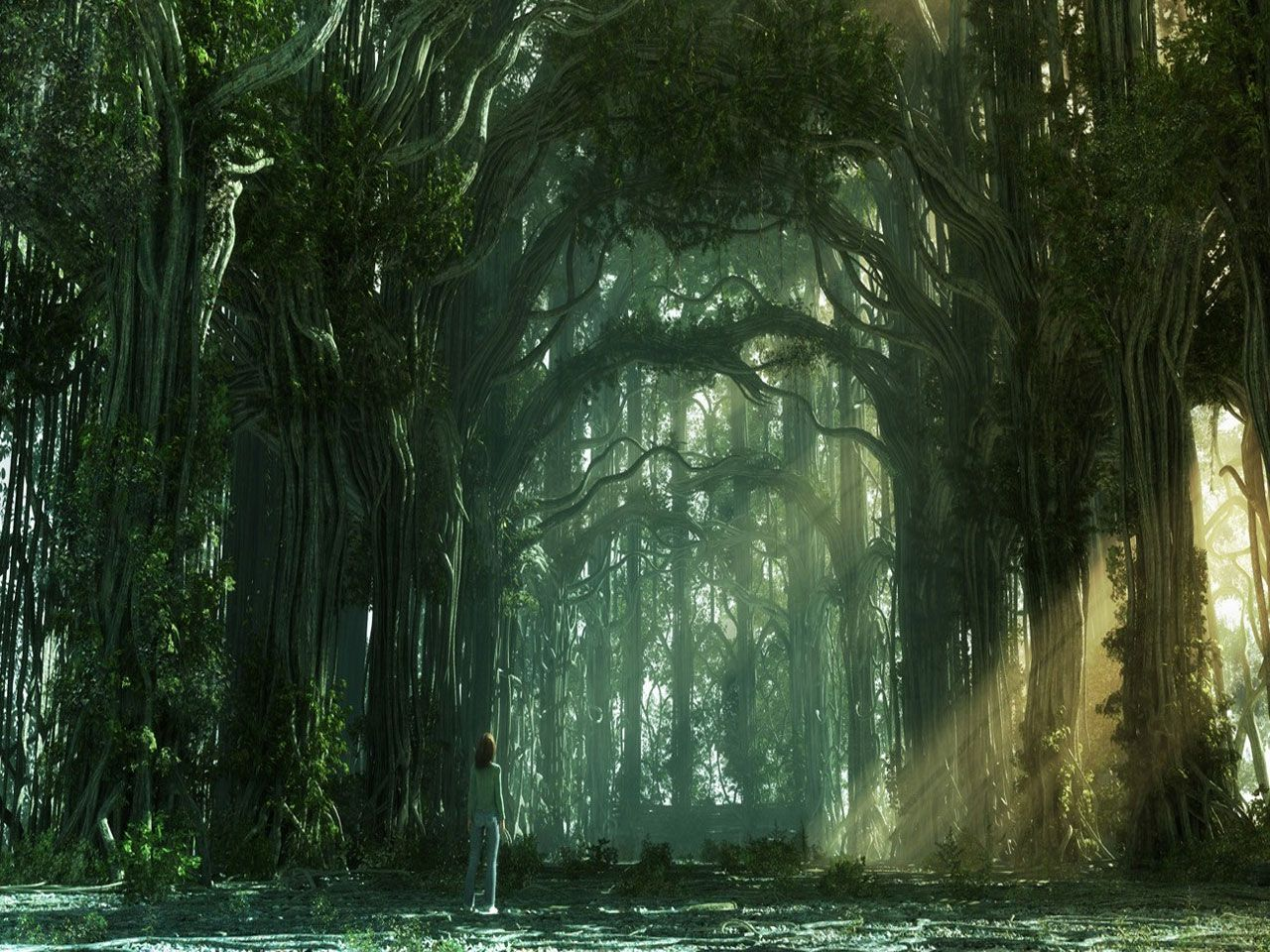 Forest Free Forest Hd Wallpapers Fantasy Forest Fantasy Art Landscapes Fantasy Landscape