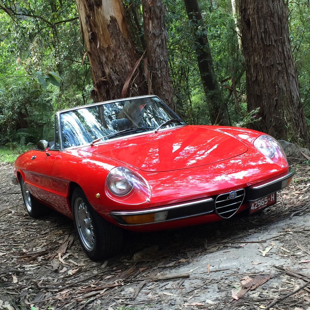 Alfa Romeo Cars, Alfa Romeo Spider