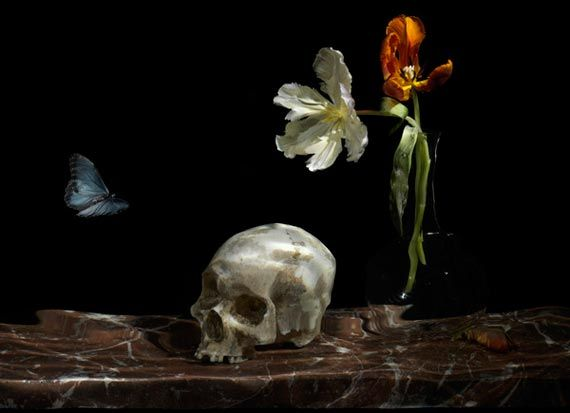 Google Image Result for http://www.multyshades.com/wp-content/uploads/2011/12/underwater-vanitas-series-by-alexander-james-1.jpg
