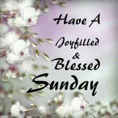 Sunday blessings greetings pinterest blessings blessed sunday blessings m4hsunfo