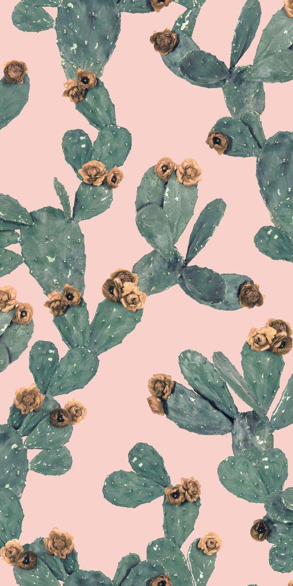 Desert Blooms Traditional Prepasted Wallpaper Samantha Santana Cute Patterns Wallpaper Prepasted Wallpaper Spring Wallpaper
