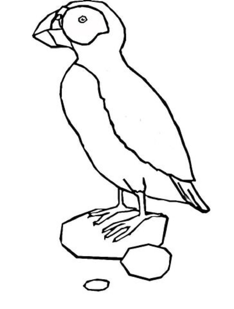 Puffin Bird Coloring Page Dbest Coloring Pages In 2019 Bird