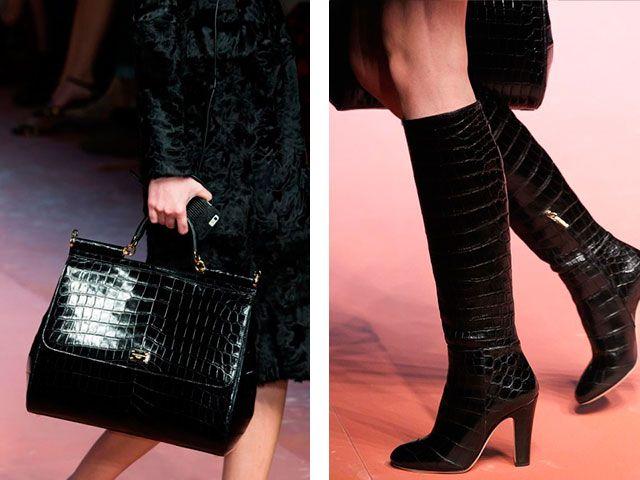 Bolsos y zapatos de Dolce & Gabbana elegante colección de Otoño-Invierno 2015-2016.