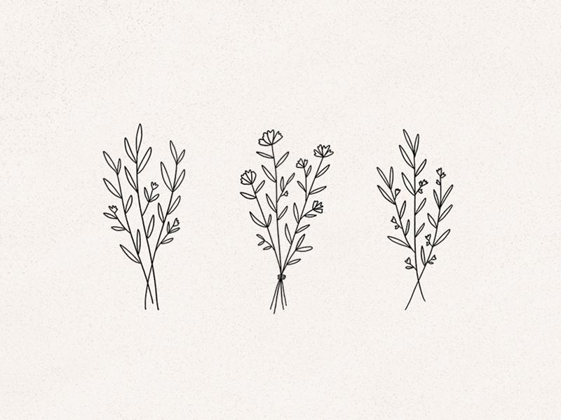 Wildflowers Simple Line Drawings Line Art Drawings Floral Drawing