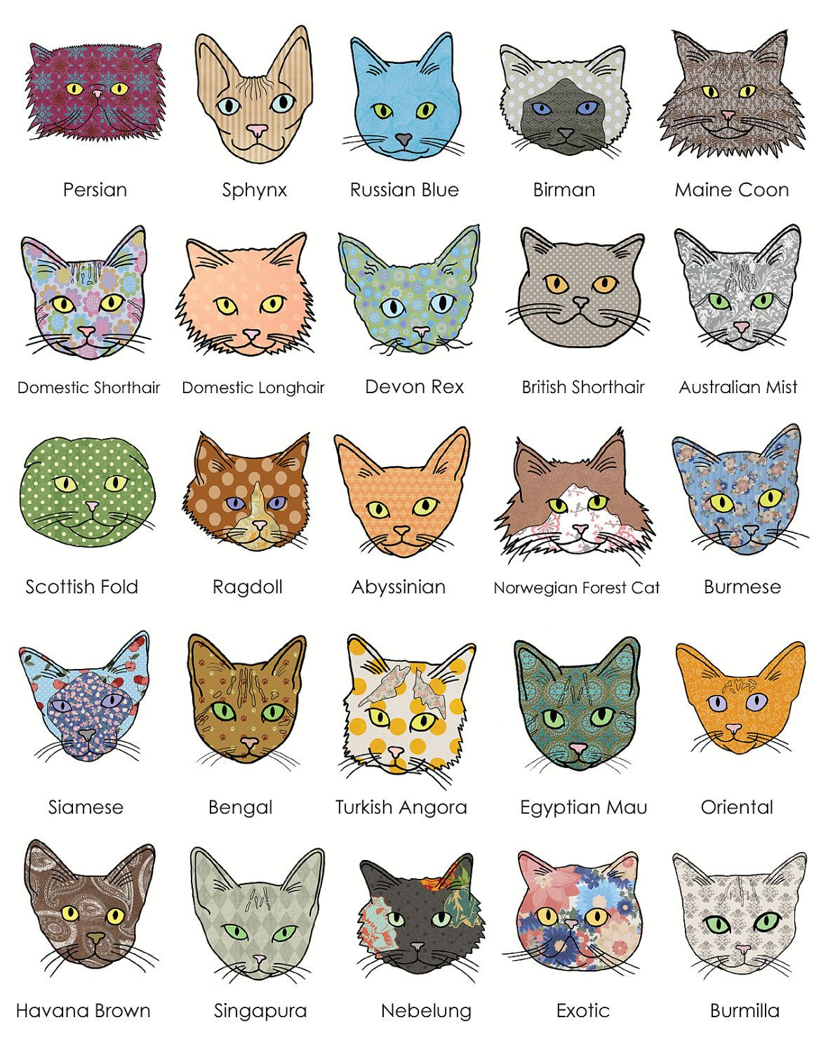 Digital Print Cat Breeds Poster Contempo Kitty Breeds
