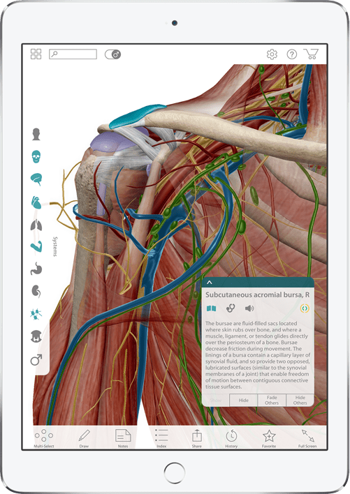 The all-new Human Anatomy Atlas 2017 Edition includes 3D models ...