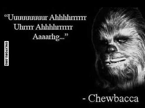 Very well said. - #funny, #lol, #fun, #humor, #comics, #meme, #gag, #lolpics, #Funnypics,