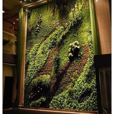 When Gardening Becomes Art Would Love To Have A Patrick Blanc Living Wall And House Big Enough Hold It