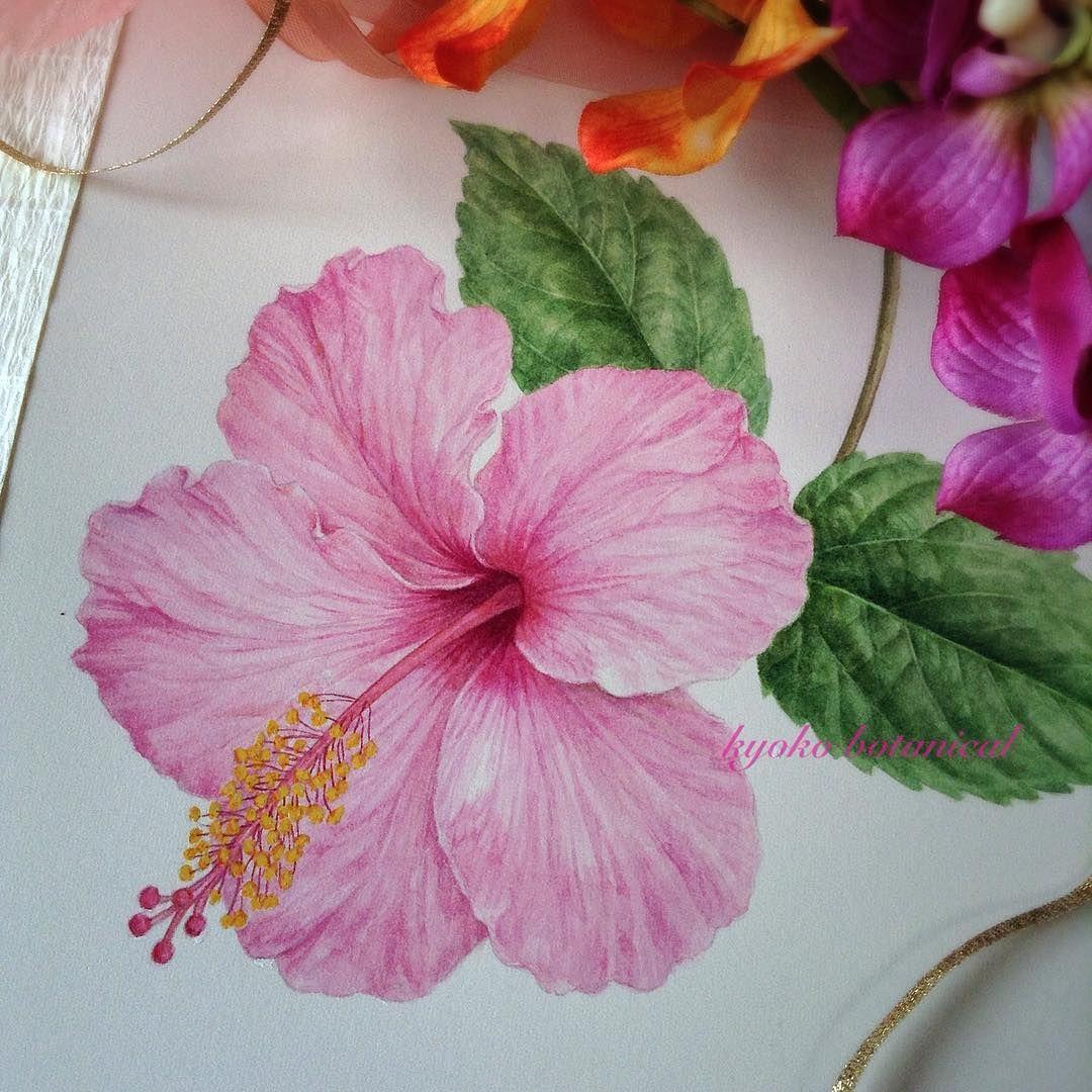 Hibiscus Botanicalart Watercolor Watercolorpainting