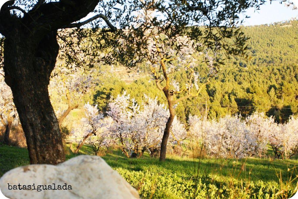 batasigualada.cat: Sábado de Sensaciones : Ya es primavera!!!! 15/03/2014