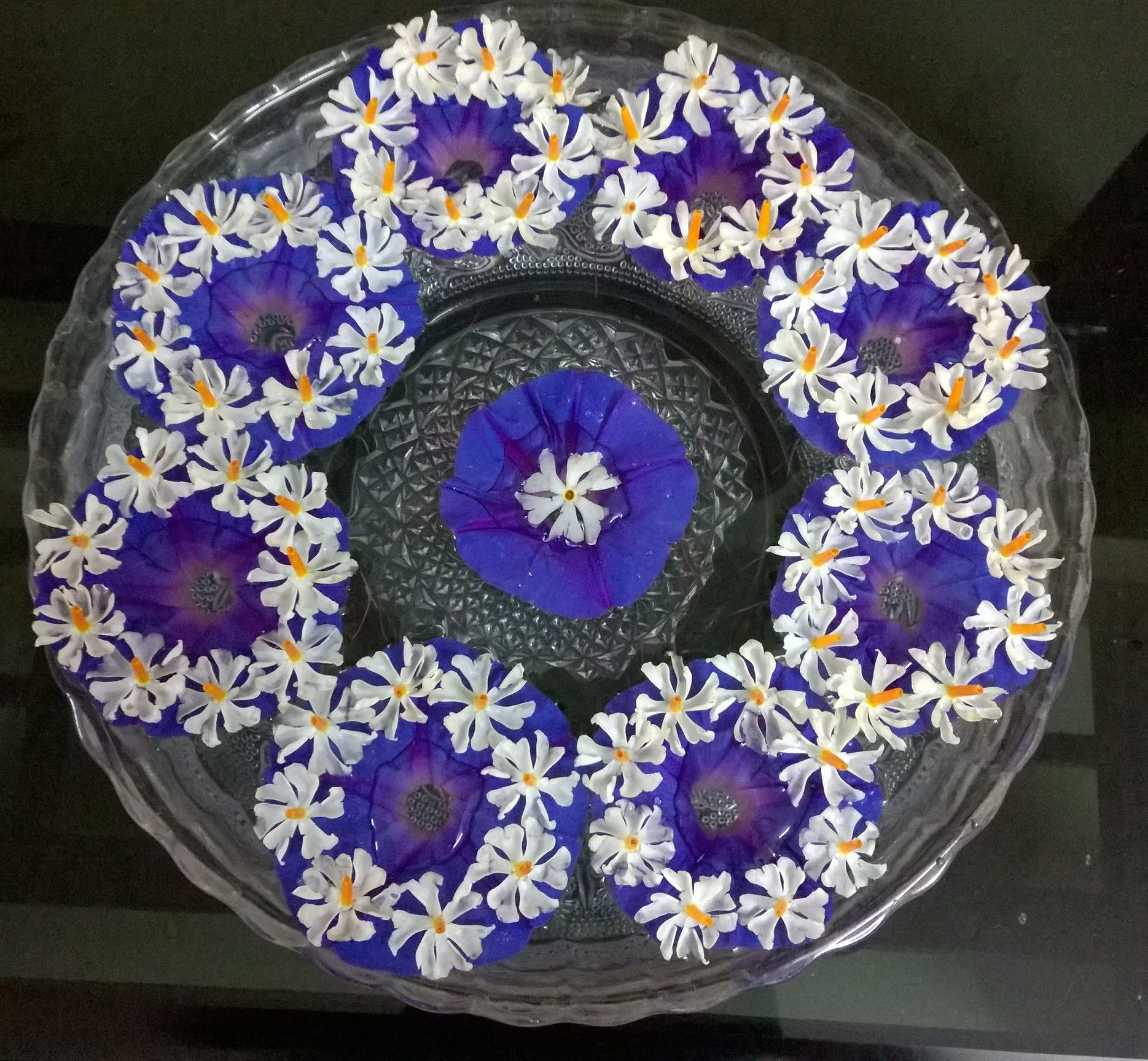 White parijata flowers arranged in small circle over