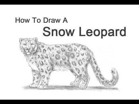 how to draw a face caching snow