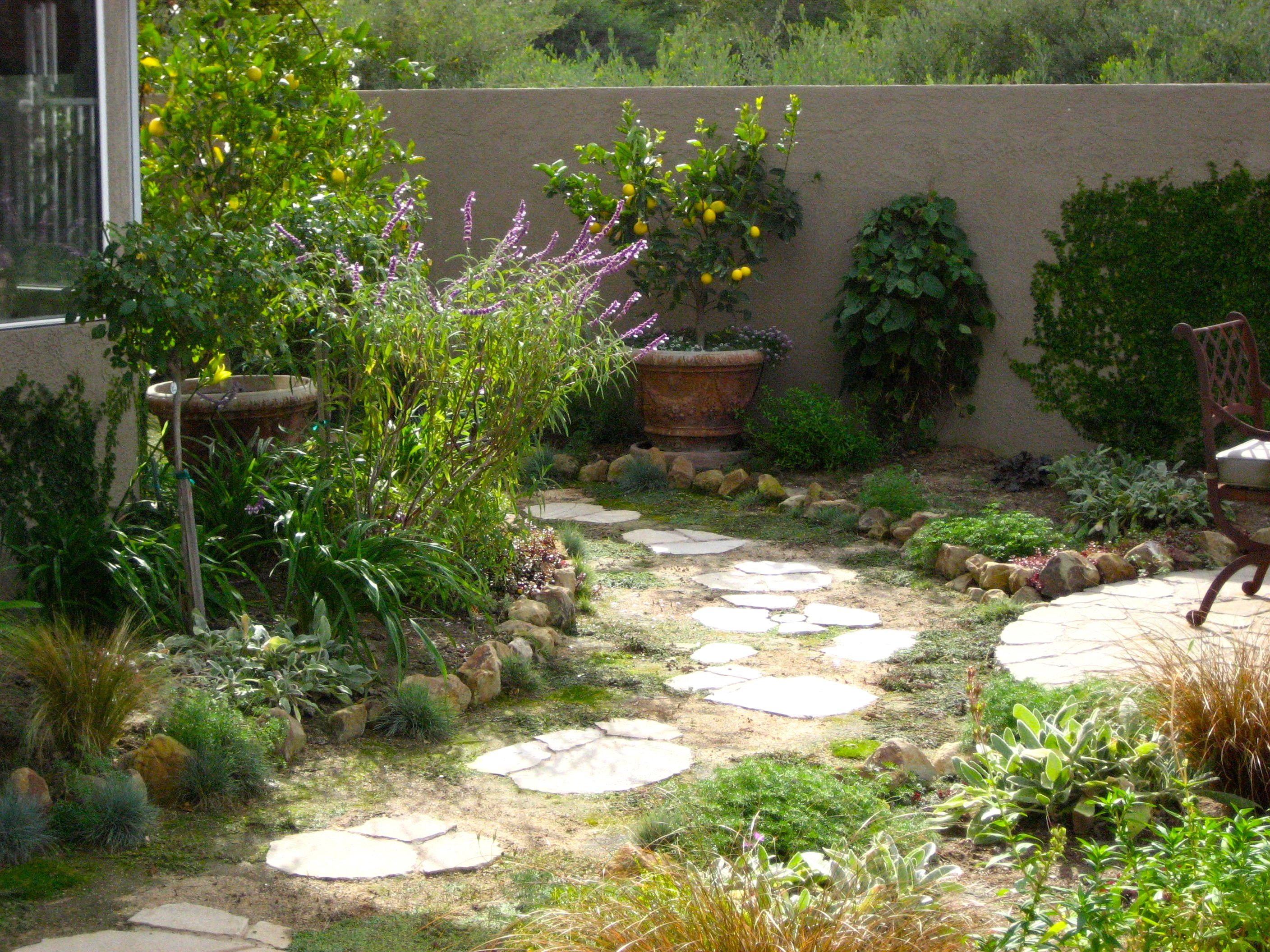 Narrow side yard makeover pathway to narrow side yard for Narrow backyard design ideas