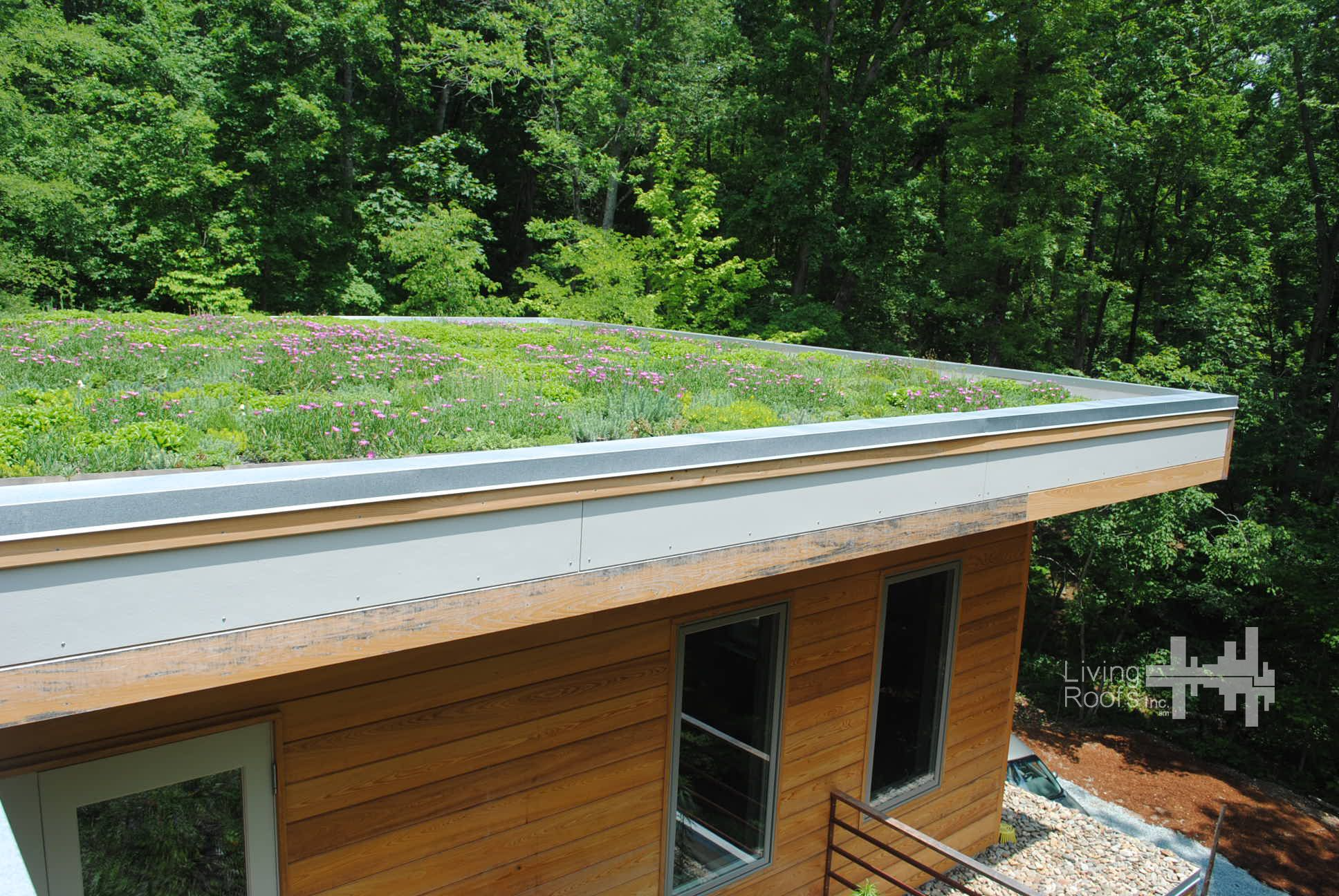 Extensive Green Roof On The Upper Roof Of This Home Is