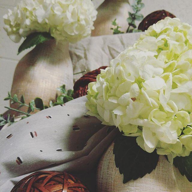 Hydrangea love #catering #spring #calvincatering #calvincollege #caterer #centerpiece #hydrangea