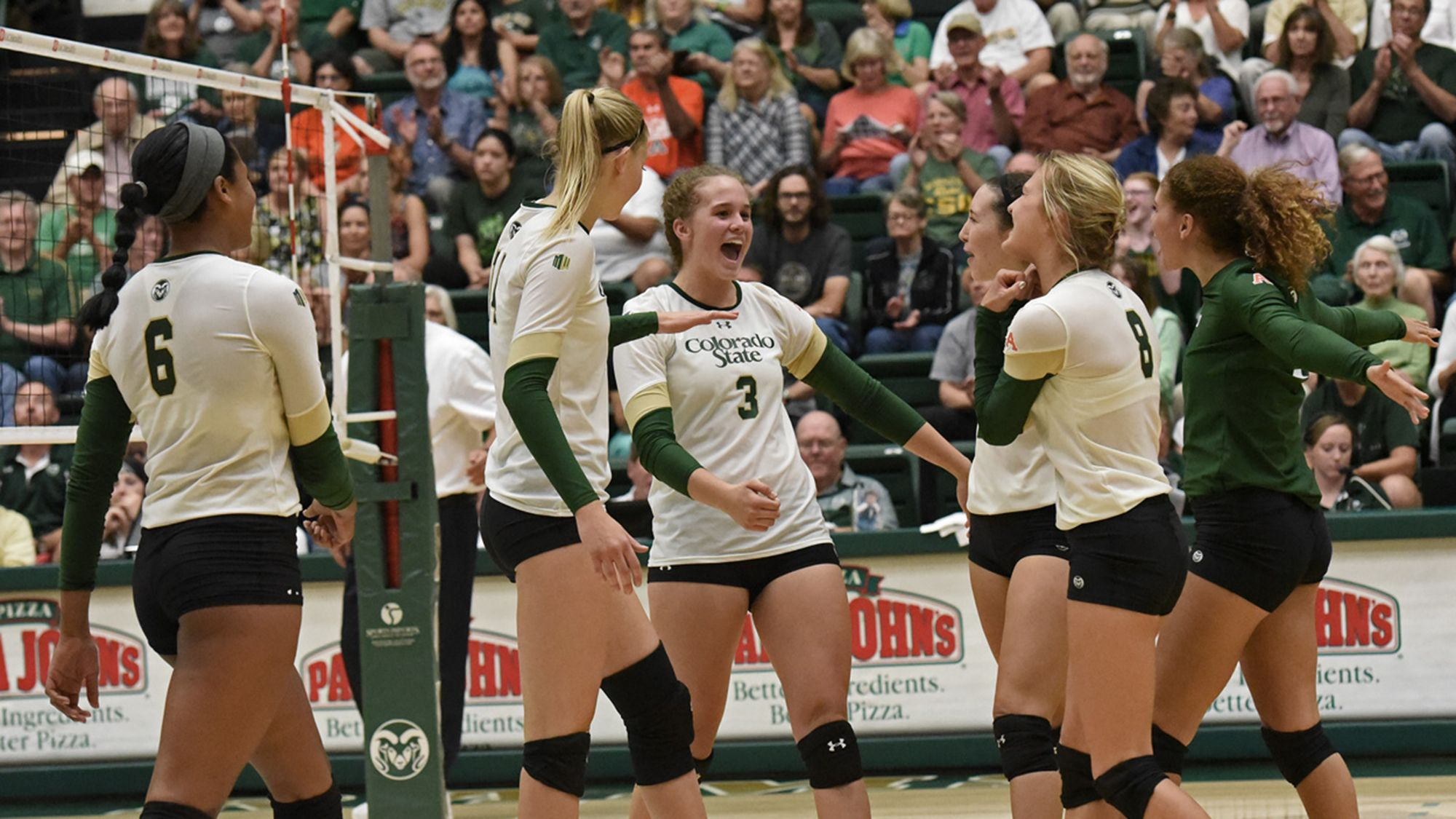 Csu Volleyball Awarded For Academic Excellence By Avca Colorado State University Volleyball Coaching Volleyball