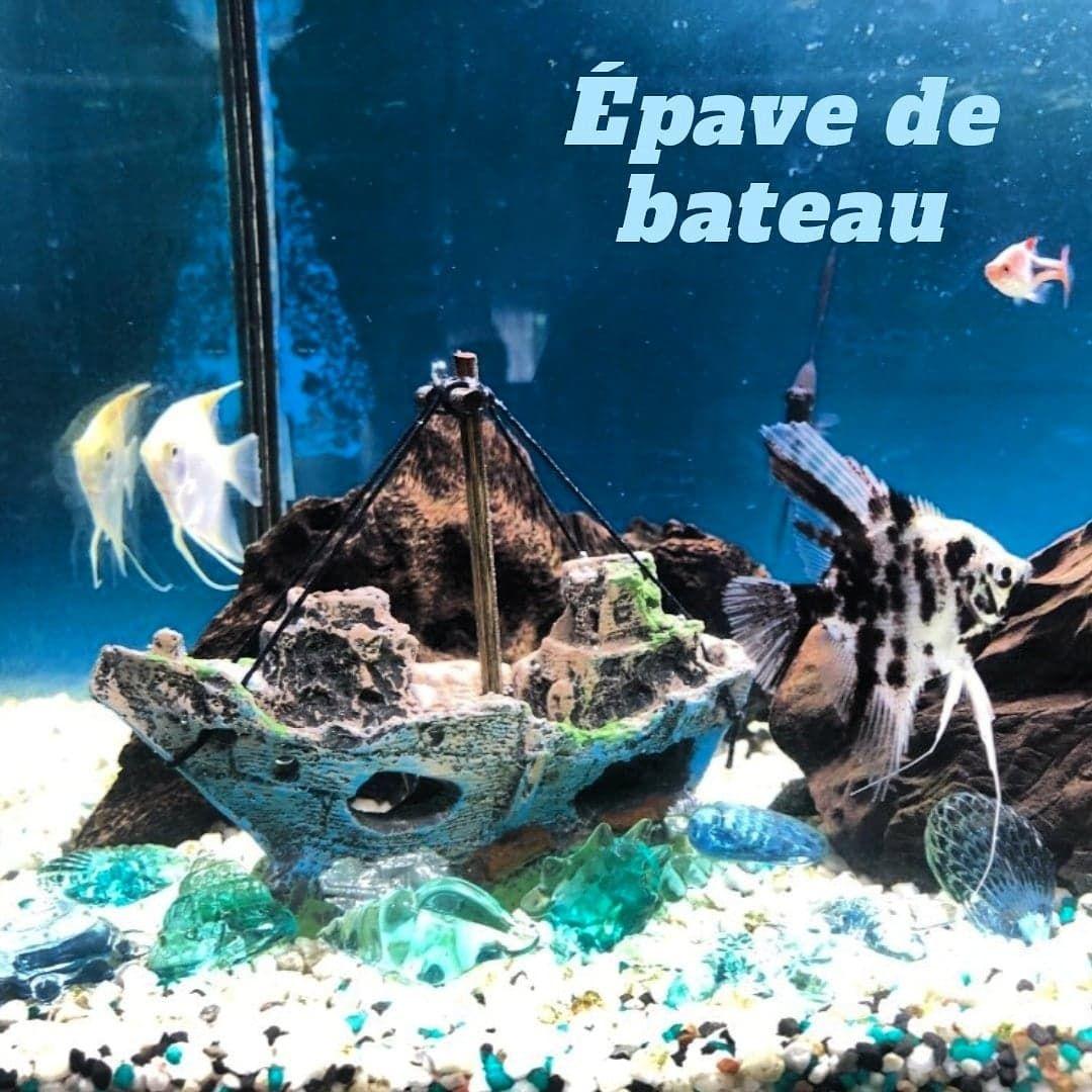 Petit Bateau Pour Aquarium En 2020 Bateau Aquarium Idee Deco Aquarium