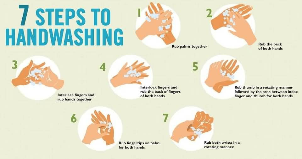 8 Steps Of Hand Washing Global Handwashing Day in 2020 | Hand washing  facts, Hand washing poster, Hand hygiene