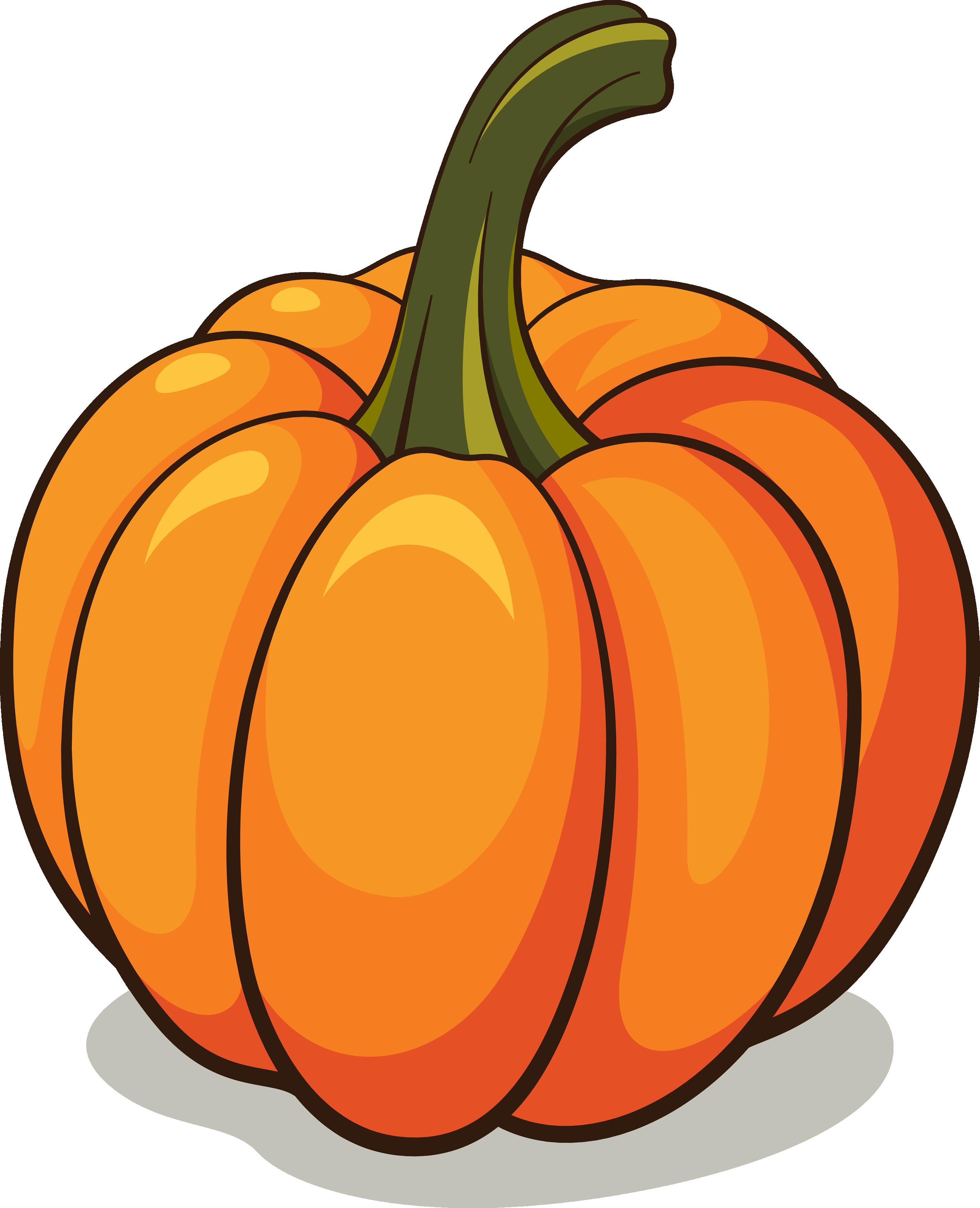 pumpkin_PNG9359.png 2,844×3,503 pixels Pumpkin vector