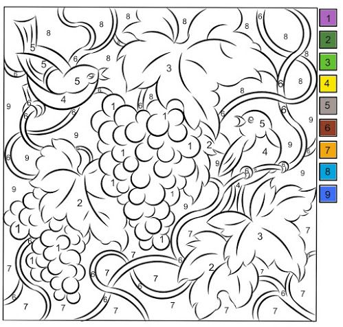 Nicole's Free Coloring Pages: COLOR BY NUMBER * GRAPES
