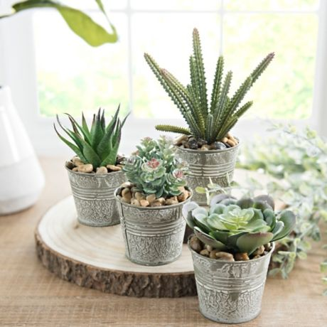 Succulents in Metal Pails is part of Metal Home Accessories Living Rooms -