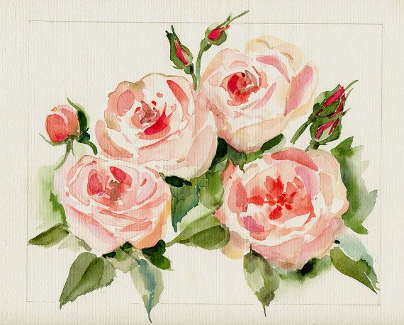 Rose painting English roses original watercolor painted by neellie, $30.00