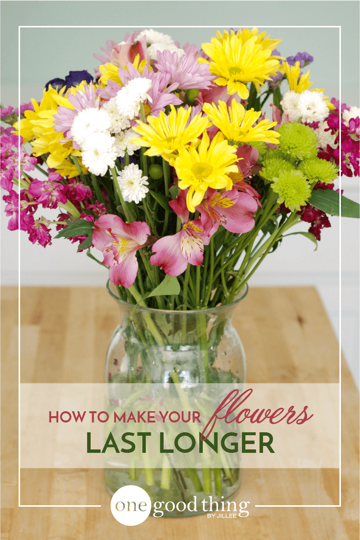How To Make Your Fresh Cut Flowers Last Longer | Stuff I need to