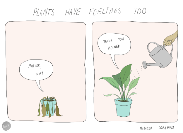 19 Things You Ll Understand If You Ve Ever Had A Houseplant Plants Have Feelings House Plants Plant Jokes