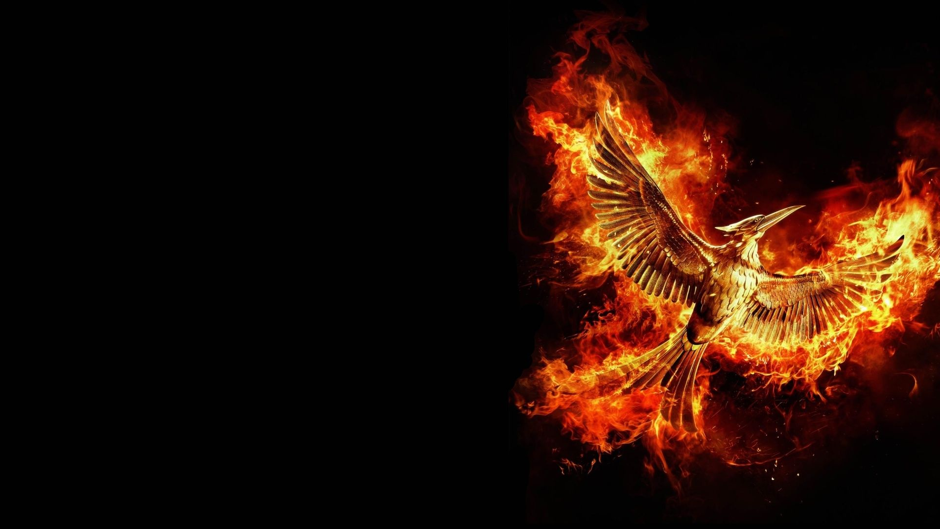 Hunger Games Wallpapers Hd 1024 768 Hunger Games Wallpaper
