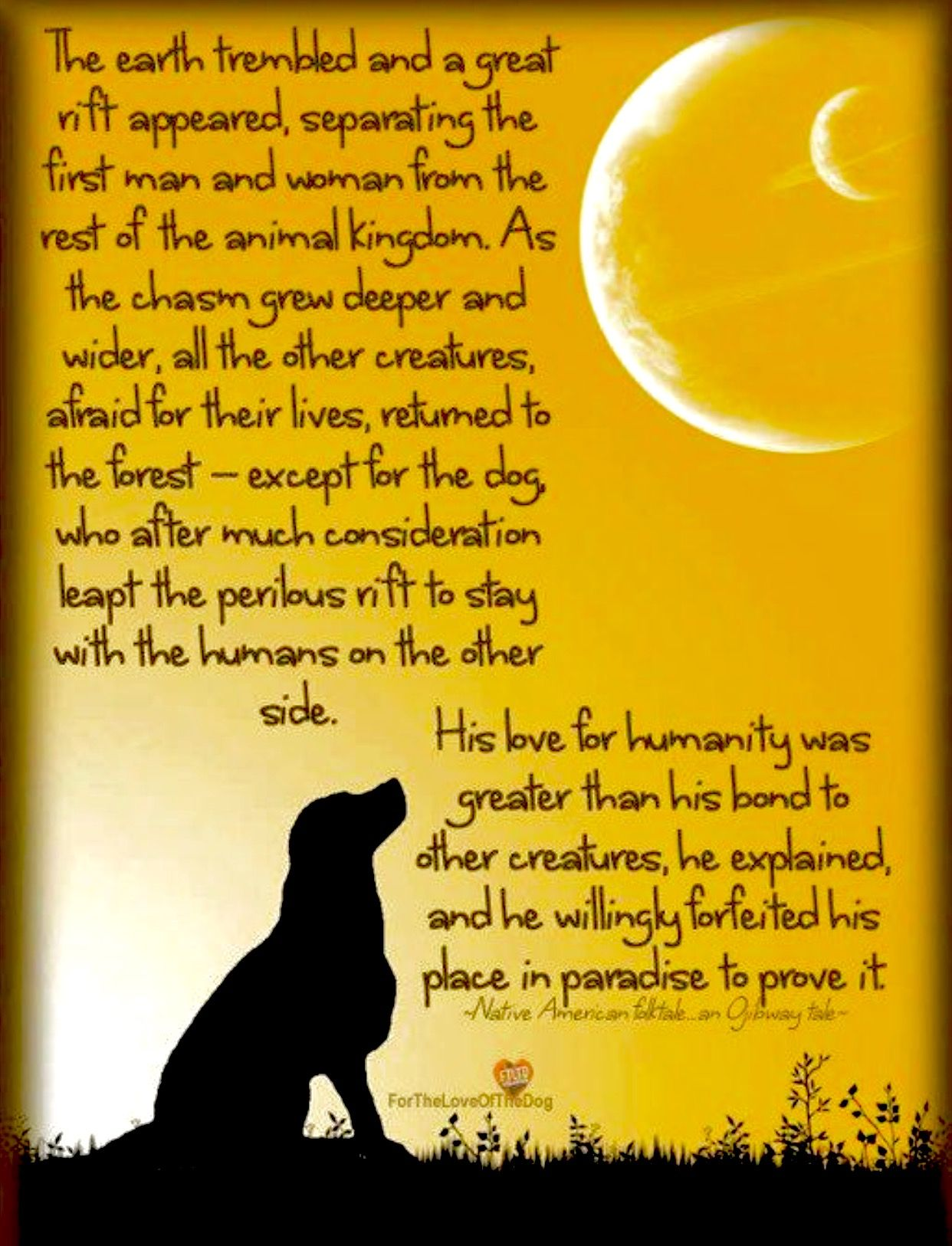 Native American Legend On How The Dog Became Mans Best -6742
