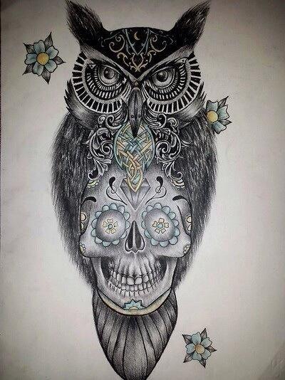 Sugar skull owl tattoo design tattoos pinterest for Owl and sugar skull tattoo