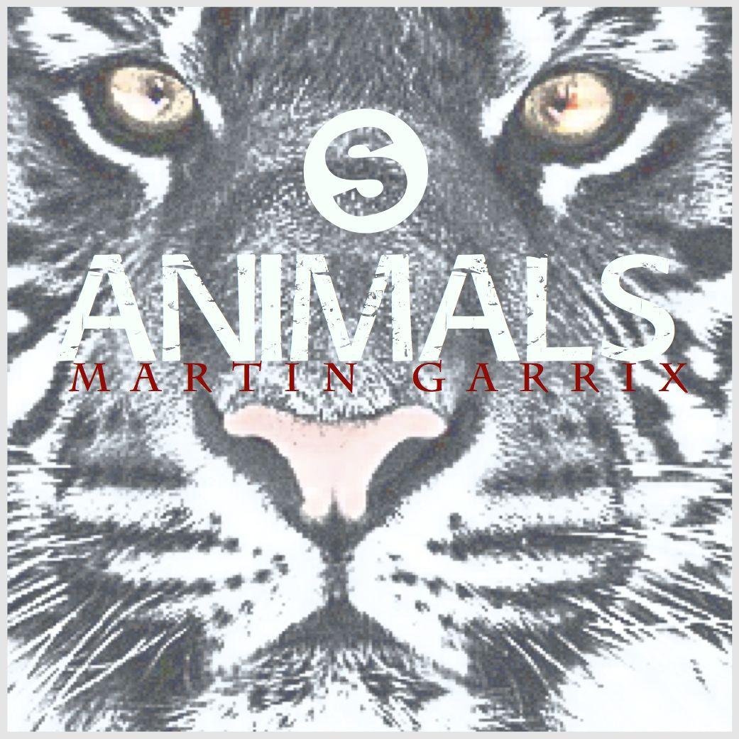 "For Martin Garrix` song ""Animals"""