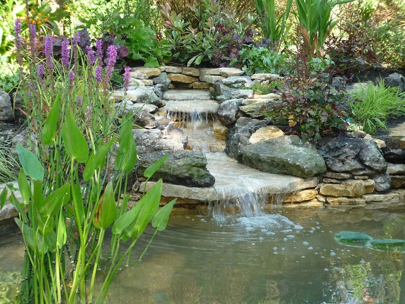 Back yard ponds and waterfalls ideas this backyard pond for Making a garden pond and waterfall