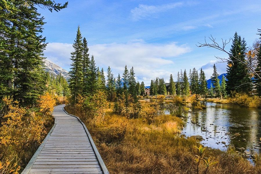 ***Fall day by AR Pilar (Canmore, Alberta, Canada)