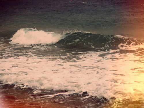 tumblr twitter backgrounds beach wwwpixsharkcom