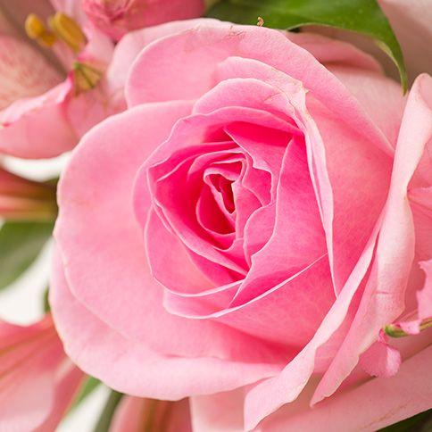 Bouquet rond dans les tons de rose (vase en option selon la taille du bouquet).