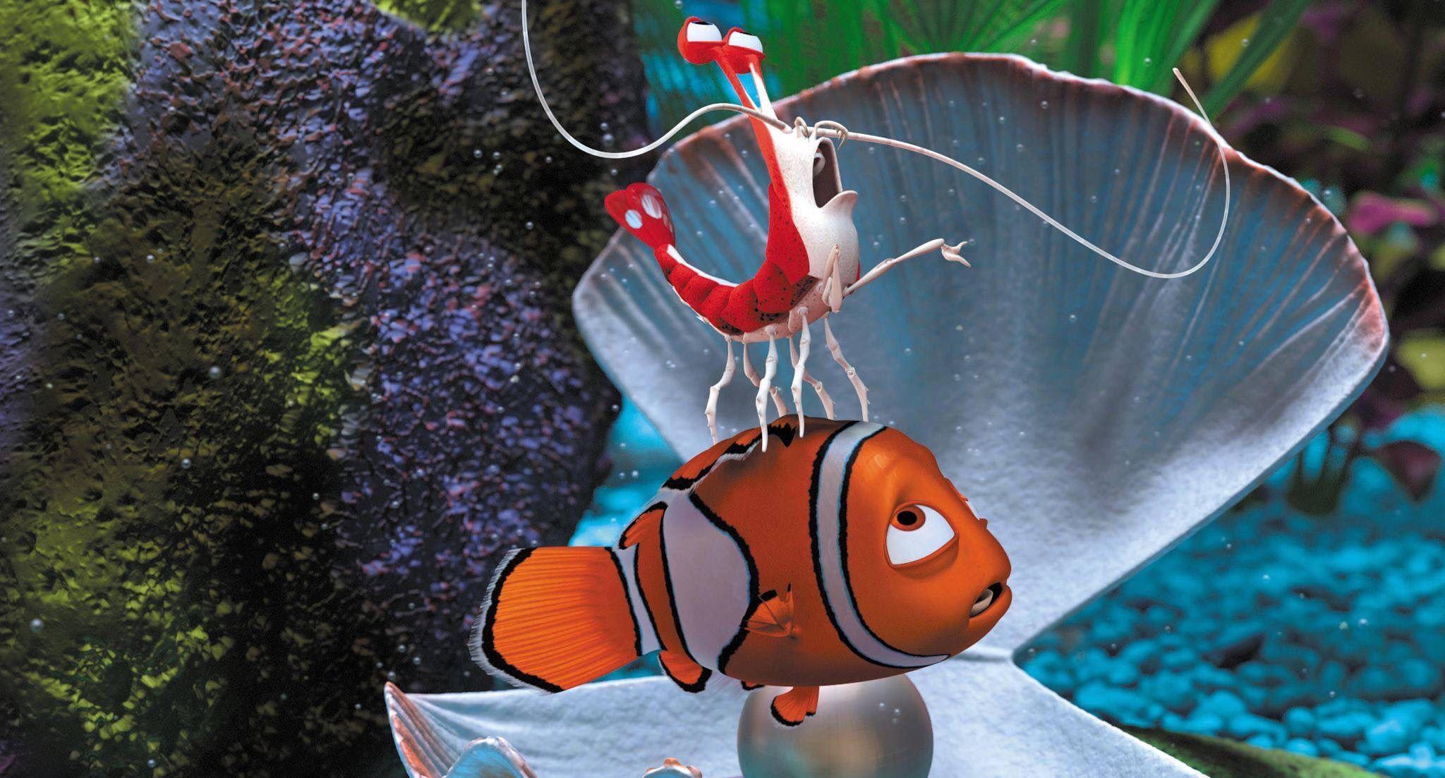 Buscando A Nemo Finding Nemo Finding Nemo Movie Nemo