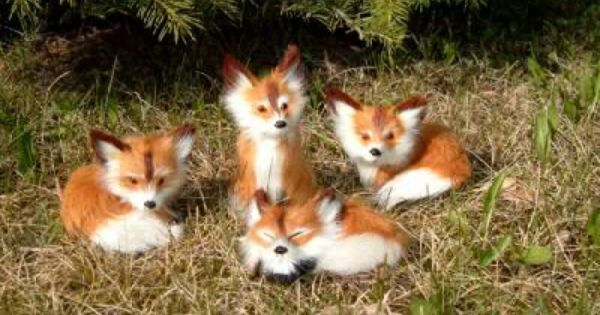 58 best images about Fox Babies on Pinterest | Baby red ...