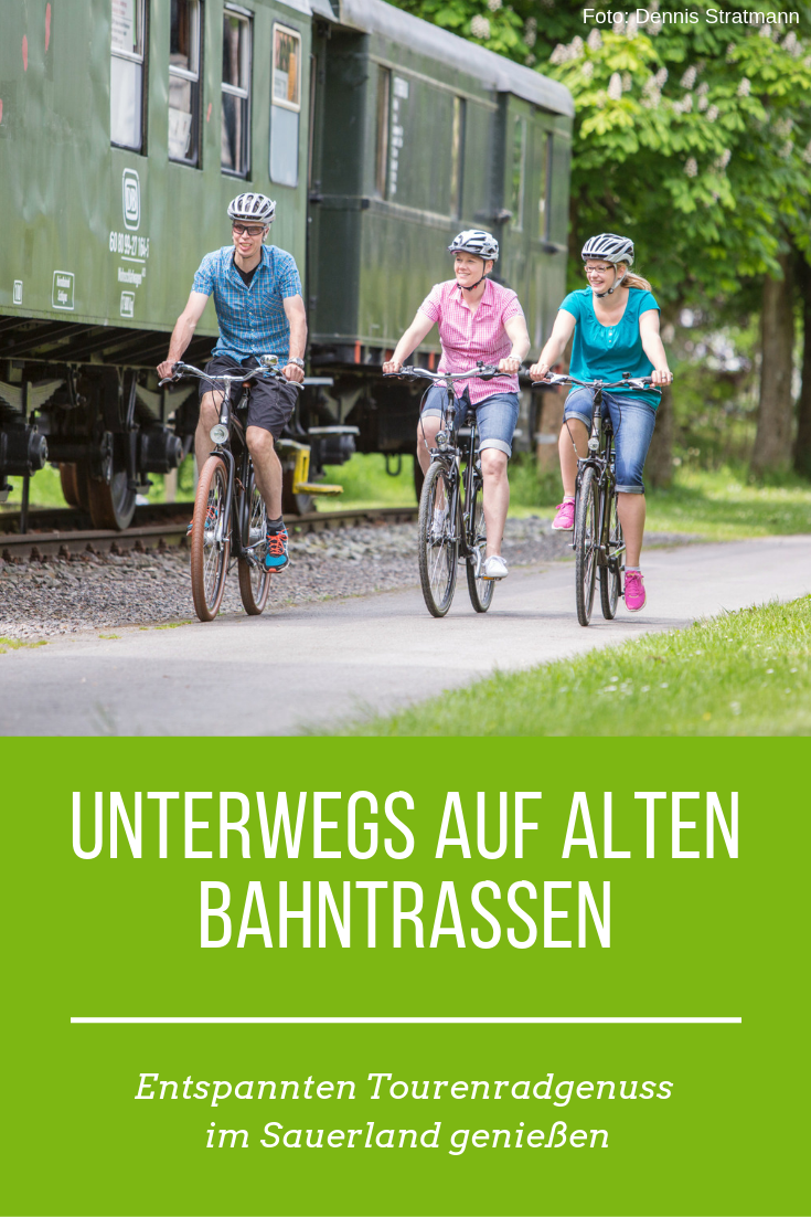 Tourenrad Und Genussradeln In 2020 E Bike Touren Radtouren
