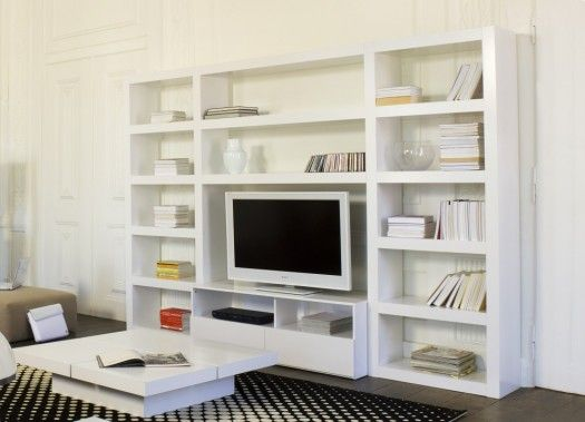 Bookcase With Tv Stand By Essencia Living Room Decoration
