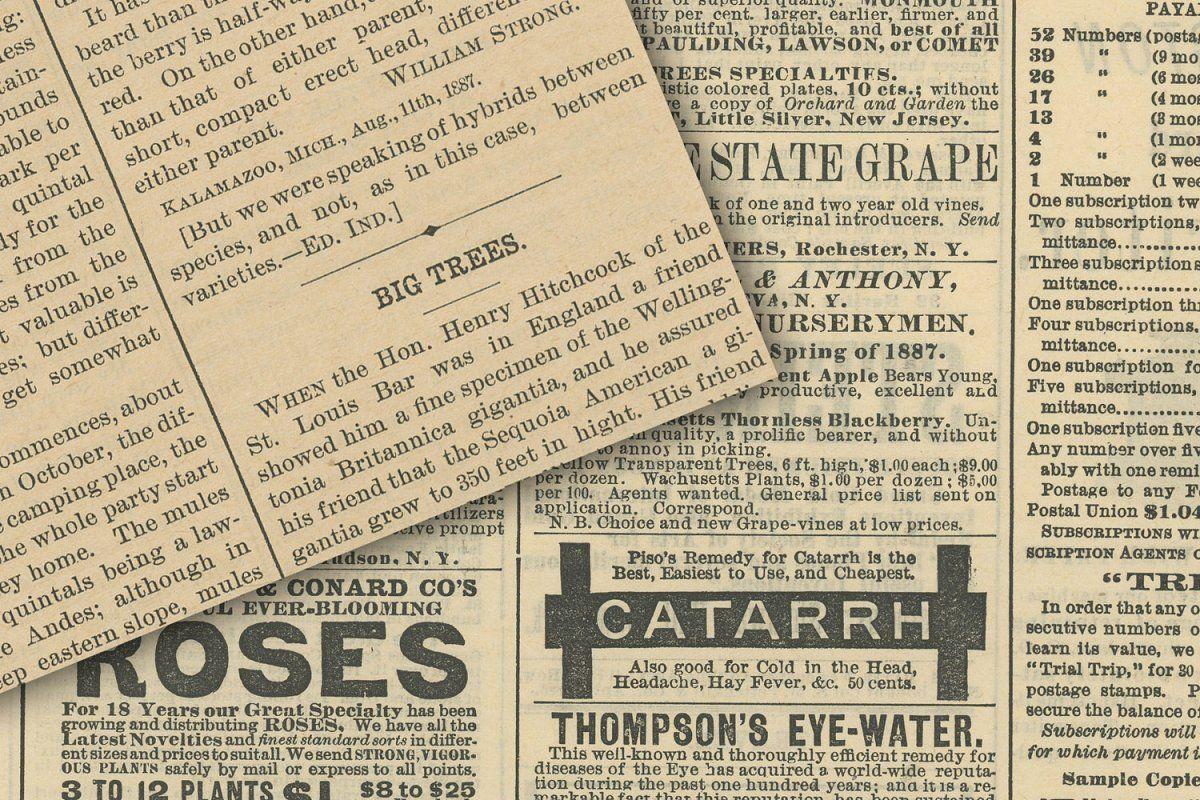 Vintage Newsprint Textures In 2020 Vintage Newspaper Digital Paper Digital Paper Pack
