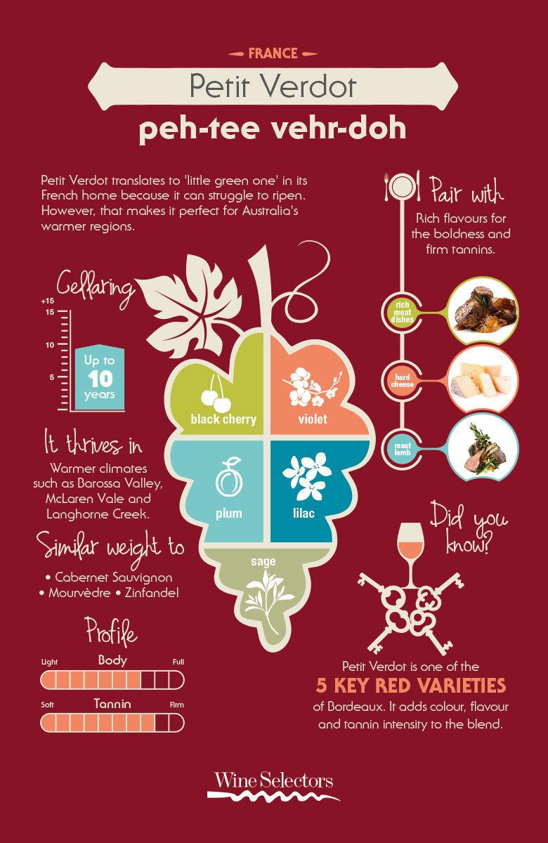 Petit Verdot Infographic Everything You Need To Know About Petit Verdot Red Wine From Varietal History To Food Pai Wine Food Pairing Wine Variety Petit Verdot
