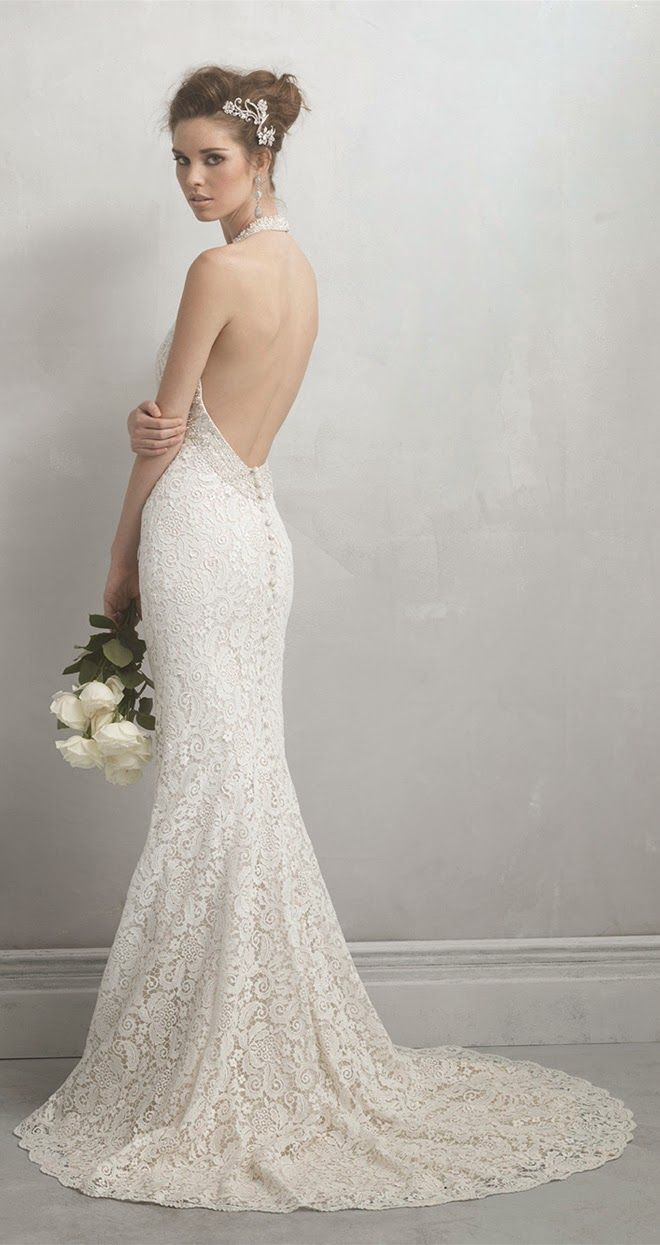 Cat in wedding dress  Allure Bridals Madison James Collection  Allure bridal Wedding