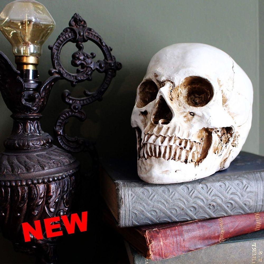 lifesize human skull replica realistic halloween skeleton party home