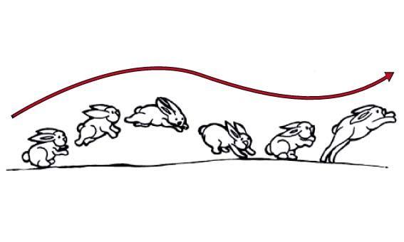 Taller Movimiento Del Dibujo En Animacion Mejores Ideas Servicios Creativos Animacion Tradicional Animacion Digital Secuencias De Imagenes