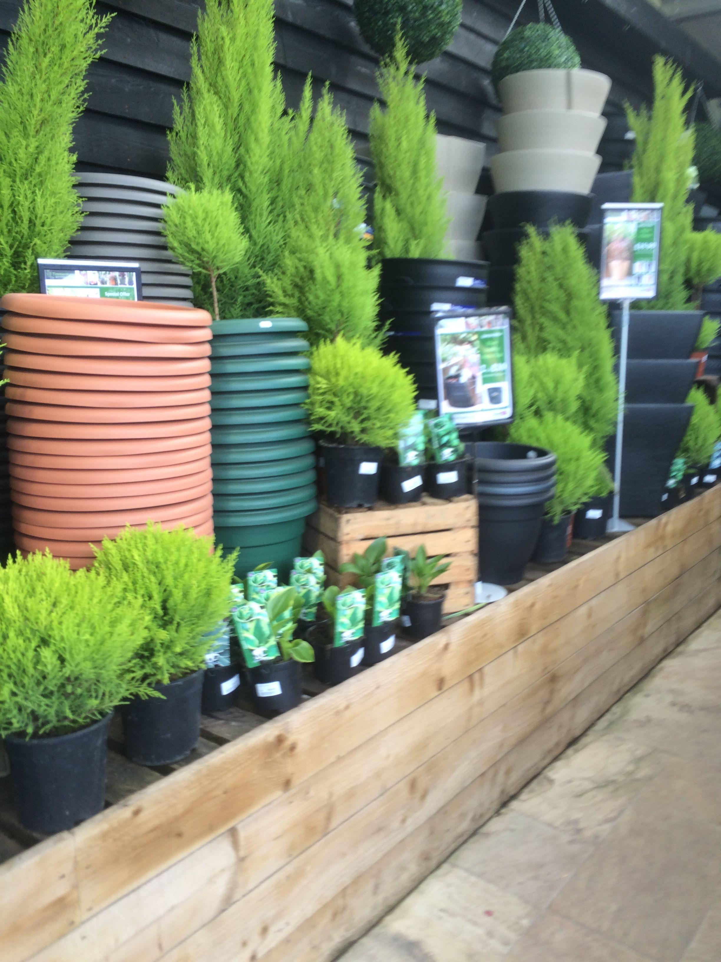 Timmermans Garden Centre Nursery Garden Outdoor Retail Home Lifestyle Plants Visual Merchandising Layout Landscape Www Clearretail ต นไม