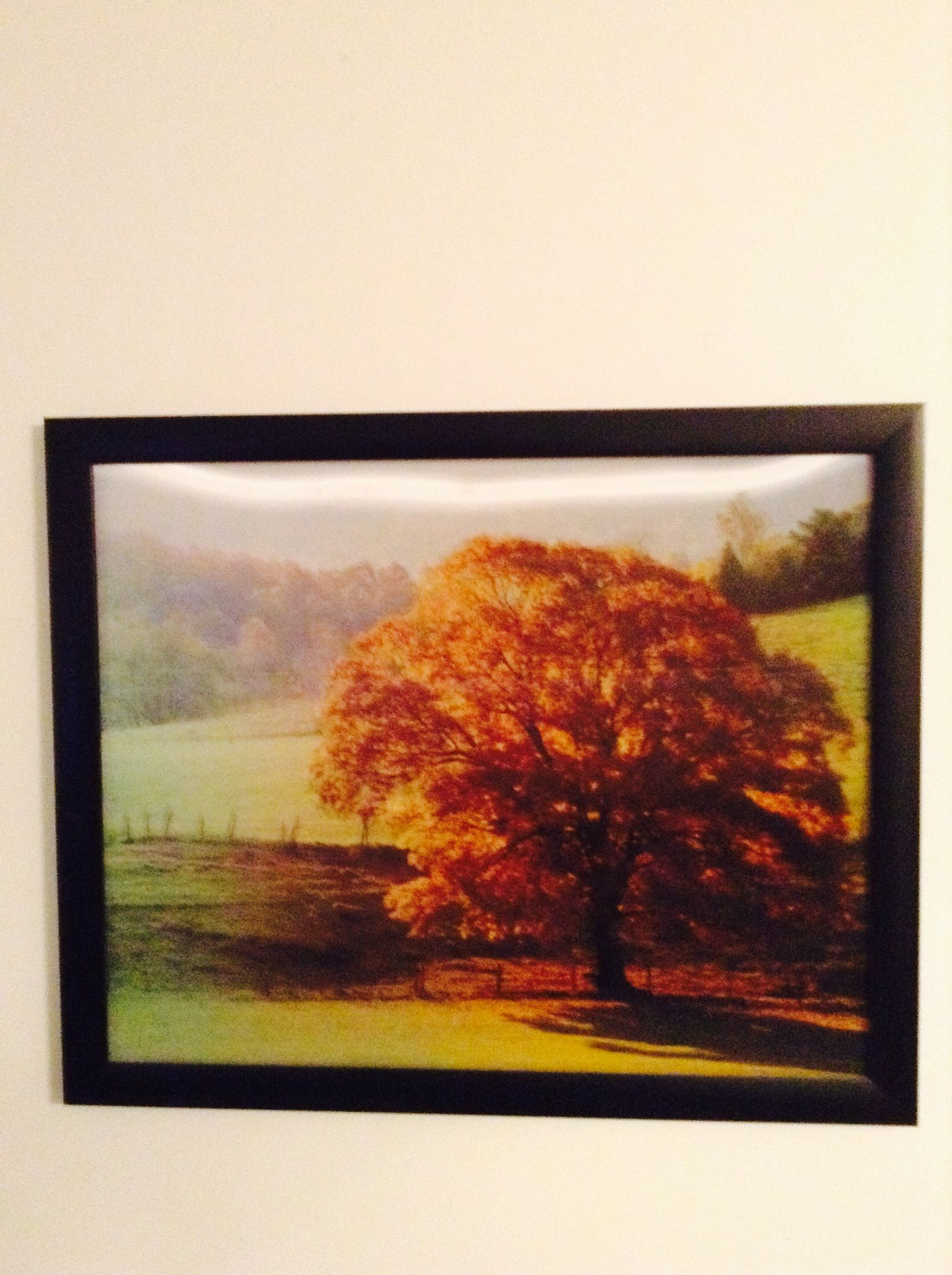 This One Is Like A Hologram You Move A Certain Way It Seasons Change Too Optical Illusions Changing Seasons Artwork